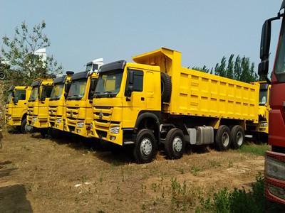 Sinotruk Howo 290hp 8*4 Tipper Truck price